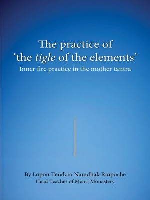 The practice of the tigle of the elements : Inner fire practice in the mother tantra
