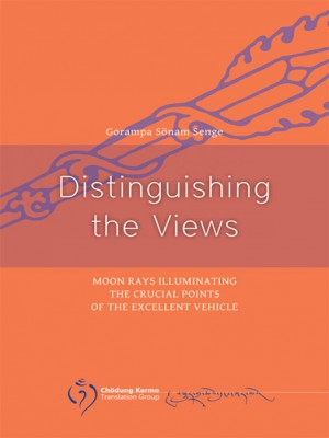 Distinguishing the Views: Moon Rays Illuminating the Crucial Points of the Excellent Vehicle
