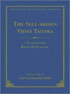 The Self Arisen Vidya Tantra (vol 1) and The Self Liberated Vidya Tantra (vol 2) A Translation of the Rigpa Rang Shar