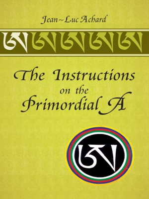 The Instructions on the Primordial A